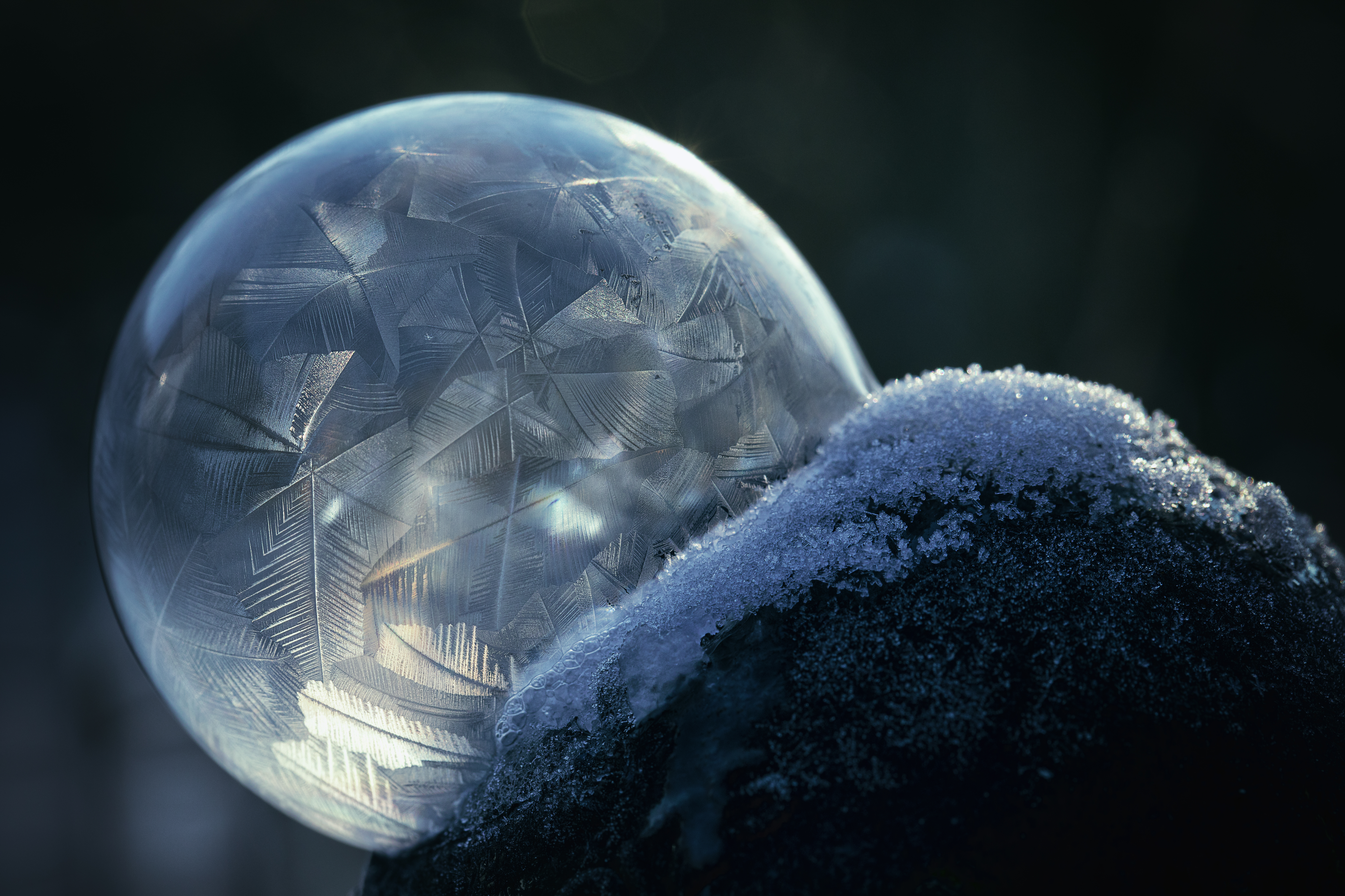 Wie man gefrorene Seifenblasen im Garten fotografiert