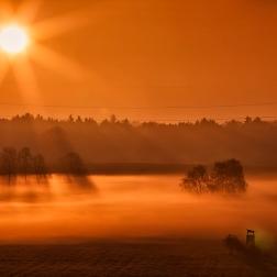_MG_7839_Filzen_Nebel