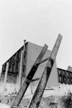 Leiter im ehemaligen Mauerstreifen 1990