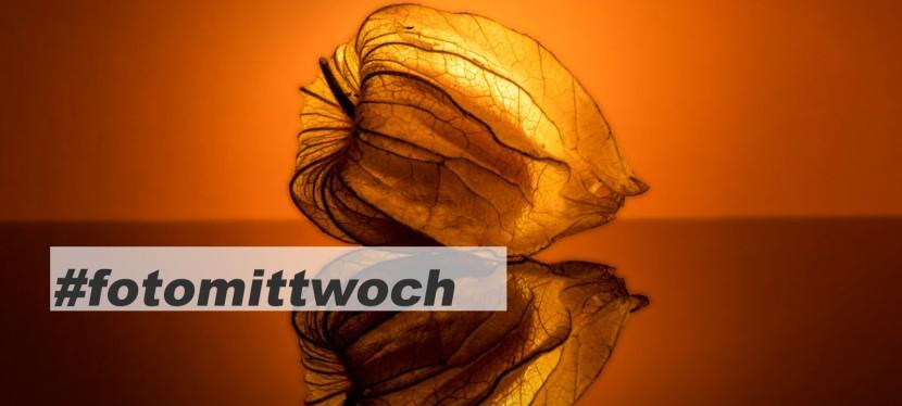 #fotomittwoch *023