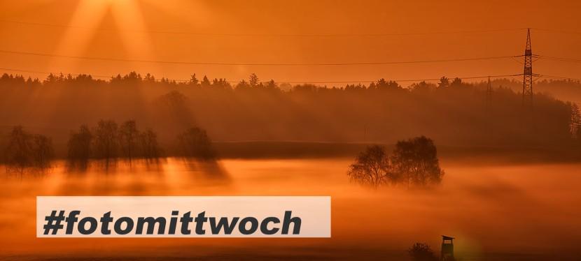 #fotomittwoch *072 – Nebel & Sonne nach demRegen